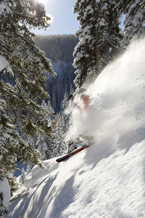 Merry Christmas and a powdery new year from realvail.com