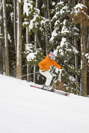 Fresh snow in the Vail Valley, pine beetles, Polis power, EPA inanity and more