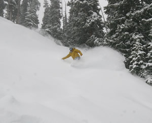 Vail hits the 250-inch mark of snow for the season with 32 new since Friday