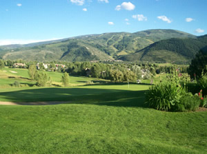 Try it before you buy it: Sonnenalp Golf Club demo day set for Friday