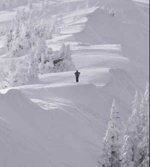 Wolf Creek is isolated, serene, and covered with more powder than anywhere in the state.