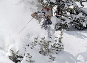 John Buckley, formerly of Vail, now of South Korea, blasts through some low-lying foliage at Silverton.