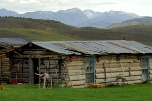 Scenic 4 Eagle Ranch four miles north of Wolcott in the Vail Valley has long been known as a great place to spend the day reliving the Wild West, but now guests can stay overnight in Tom's Tent.