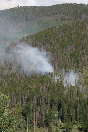 A small fire broke out in the national forest between the West Vail neighborhoods of Matterhorn and Intermountain Friday, burning about an acre before crews, including a helicopter and slurry bomber, snuffed it out.